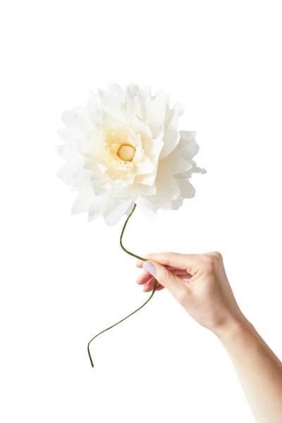 Studio About, Paper Flower Grand DAHLIA Sand